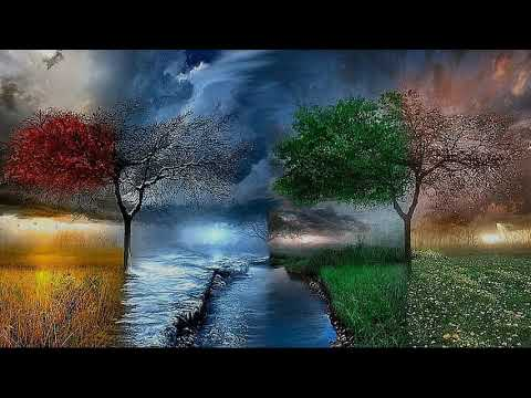 Vivaldi: Les quatre saisons (Stereo Version)