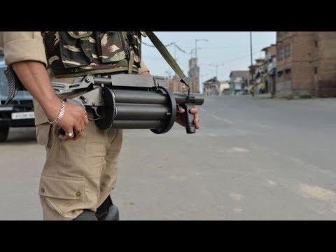কাশ্মীর: 'ভারত জানে না এর পরিণতি কী হবে'