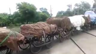 Funny Video 2017 Train on Road