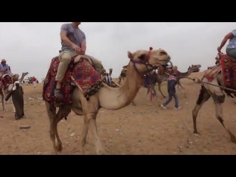 Viking River Cruise in Egypt