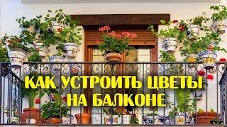 видео Оформление балкона цветами. 20 фото