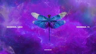 Domnul Udo - Ne ocupam noi feat. NOSFE, NCTK, DJ Sfera (Audio)