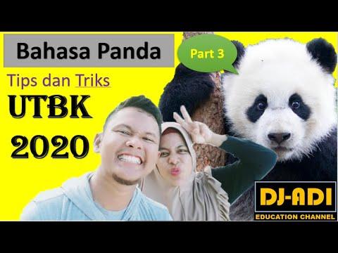 fr-utbk-2020-soal-bahasa-panda-nomor-7-sampai-9