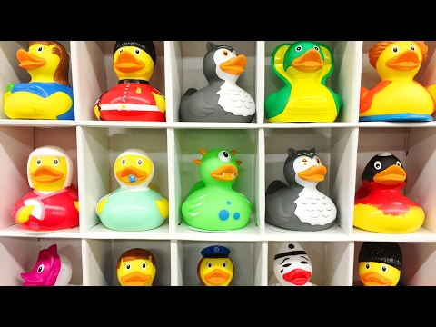 Rubber Duck Bathtub Big collection edition