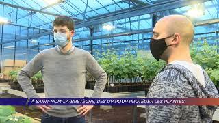 Yvelines | A Saint-Nom-la-Bretèche, des UV pour protéger les plantes des champignons
