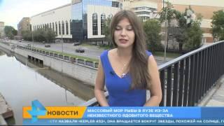 Москвичи сняли на видео ядовито-оранжевую воду в Яузе.