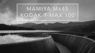 Mamiya M645    Kodak T-Max 100   Lower Nihotupu Dam   4K