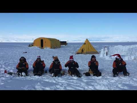 Postgraduate Certificate in Antarctic Studies