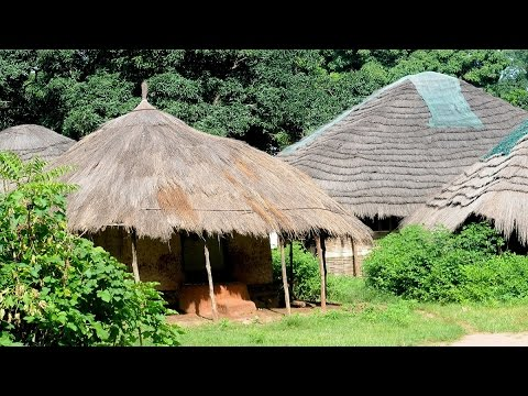 African Music Instrumental - African Village