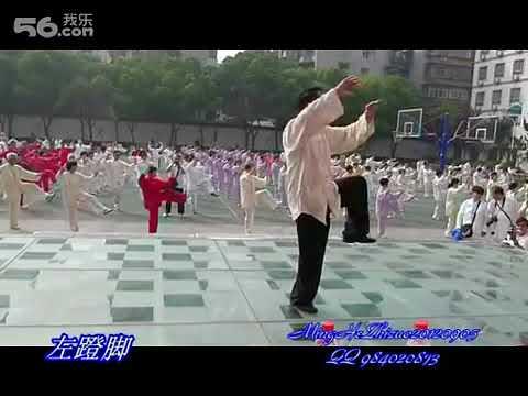 Yang Family 85 form with Zhou You Bin