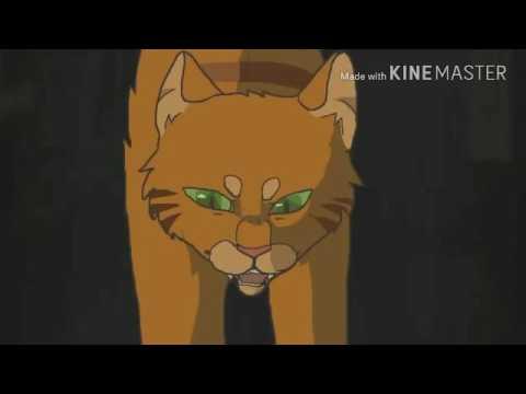 Warrior cats {we all still die}