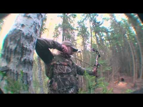 Hunting Black Bears in Canada with Buck Paradise Outfitters PTAH