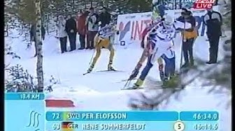 2001 Lahti World Ski Championships - 50km free technic men's