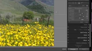 Graduated Filter Tool Tutorial - Lightroom 3 Video Tutorial