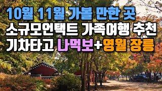 10월 11월 국내가을여행지 |  소규모언택트 가족여행…