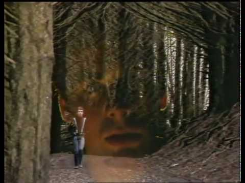The Chills - Pink Frost (Official Music Video)
