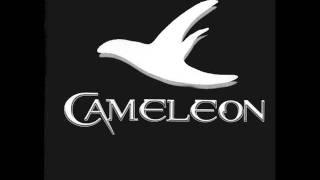 camlon-rechany