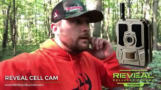 Setting up the All new REVEAL CELL Cam over a Pure Outdoor Alliance food plot