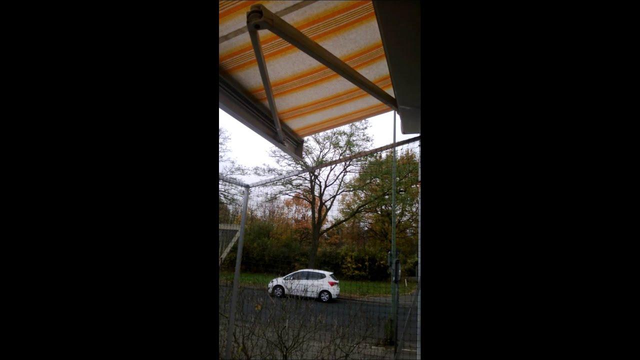 Sonnenschutz Und Katzennetz Am Balkon Markise Mit
