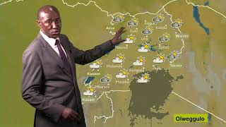 Weather forecast for 11/07/2019