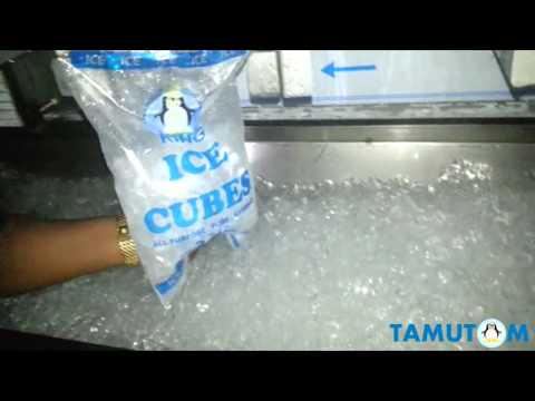 Cube ice maker 2 ton Europan