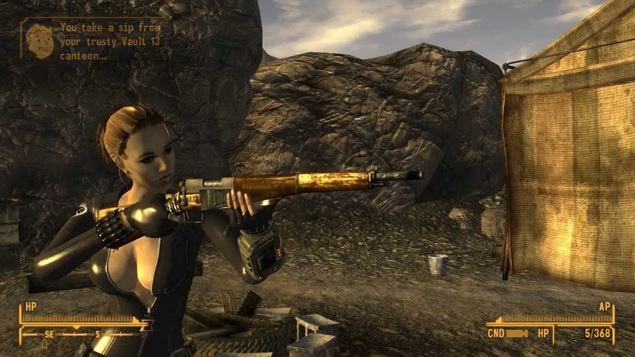 how to set up fallout new vegas with nmm