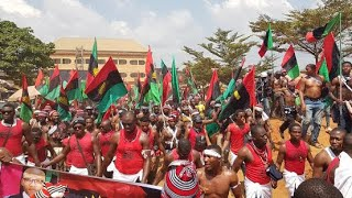 Just in,IPOB We Do Not Expect Everyone To Support Biafra struggle