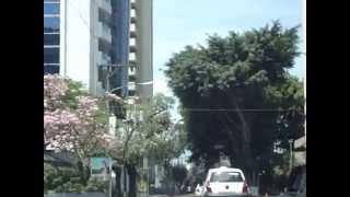 13 calle Zona 10 ciudad de Guatemala, Erick Reyes Andrade