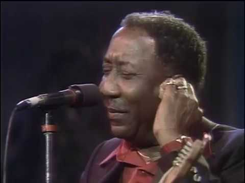 MUDDY WATERS Live Montreal