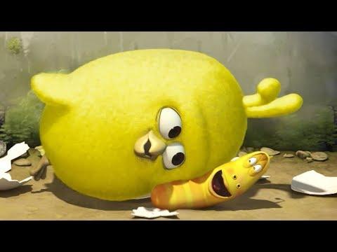 LARVA - CHICK | Cartoon Movie | Videos For Kids | Larva Cartoon | LARVA Official