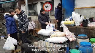 Видео нашей поездки в приют СОС в Киеве в Пирогово. Отгружен корм, поглажены собаки. Зализали джинсы