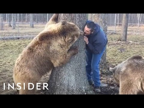 Mark Wallengren - Couple Raises Orphaned Bears