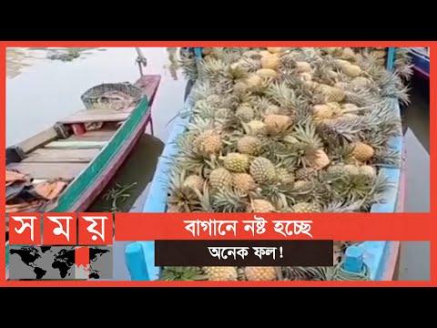 উৎপাদিত ফলের চাহিদা কম থাকায় কমেছে বিক্রিও | Fruit Bazar | Business News | Somoy TV