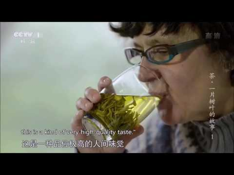 Tea, Story of A Leaf (English subtitles)