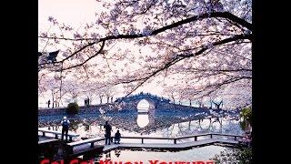I Draw My Dream - Go! Go! Nihon Youtube Video Contest - Gaia