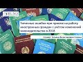 Типичные ошибки при приёме на работу иностранных граждан   РУНО