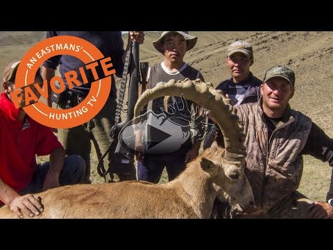 Hunting Mongolia With The Eastman Family - Ibex Hunt