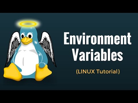 Environment Variables : Linux Tutorial #11