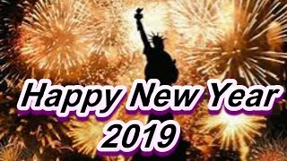 Happy New Year 2019 #NewYork
