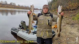 Осенний жор щуки Рыбалка троллингом на щуку и судака Республика Коми