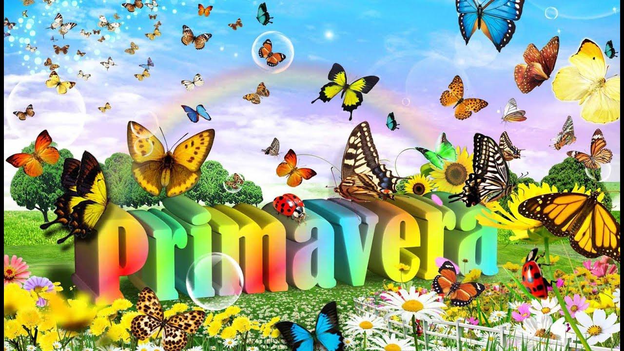 Fiesta increíble del día en las vacaciones de primavera 8