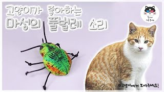 [Video for cat] Insect sound for cat! / music for cat, cat game, cat TV