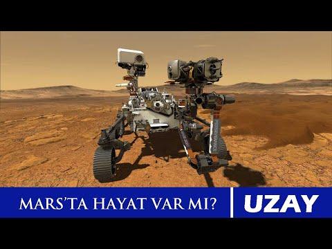 Perseverance Mars Yolunda