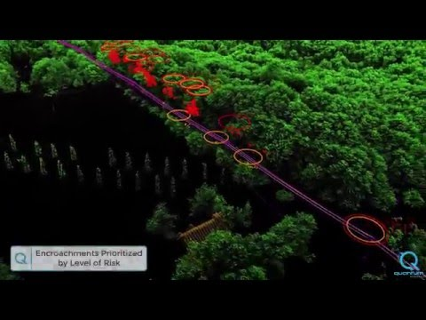 Aerial LiDAR Analytics for Electric Distribution