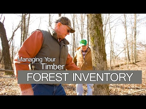 Managing Your Timber - FOREST INVENTORY