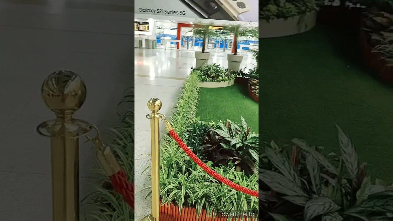 Indoor plants beautiful from Indira Gandhi International Airport #youtubeshorts #indoorplant
