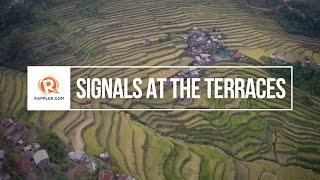 Signals at the Terraces
