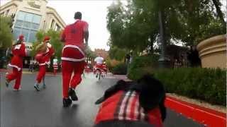 One Dog, One GoPro and 9,000+ Santas in Las Vegas | Great Santa Run 2012