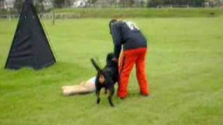 Rottweiler Especializada Ecuador 2007 - 3