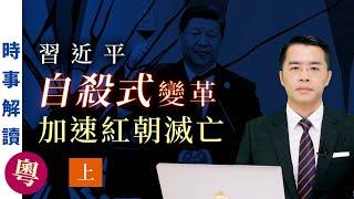 習近平自殺式變革加速紅朝滅亡 (粵語上集)|「透視中國」時事解讀【0078】SinoInsider 20210907